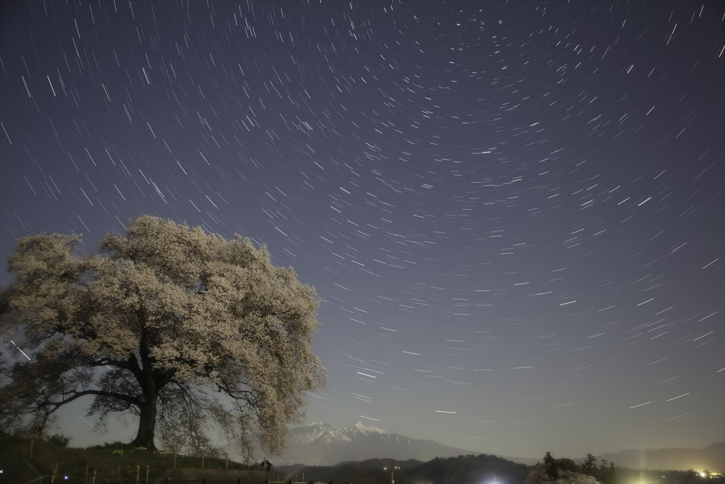 A cherry tree in full bloom in Wani mound and shining stars, Mt. Yatsugatake in a spring haze